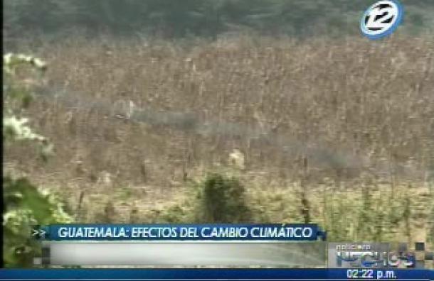 Guatemala: Efectos del cambio climático en la región