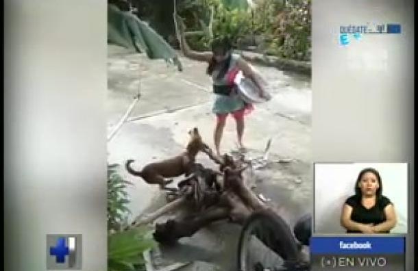 Indignante maltrato a un perro en Zacatecoluca